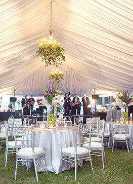 Grand Rapids Wedding u0026 Event Tent Rentals : tent drapes - memphite.com